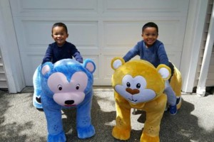 Photo #11: Electronic Animal Rides for Parties & Events