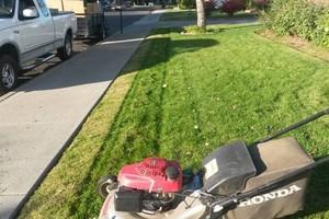 Photo #6: Abel' Lawn Services