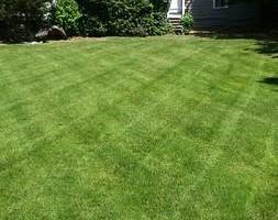 Photo #1: Abel' Lawn Services