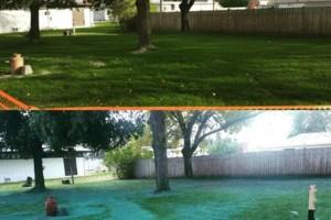 Photo #5: Awesome Grass Hydroseeding