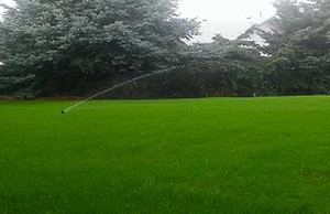 Photo #2: Awesome Grass Hydroseeding