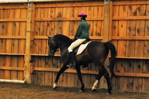 Photo #1: Riding Lessons Focused on Enhancing the Skills of Adult Amateurs