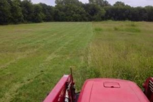 Photo #11: Shredding services & tractor mowing