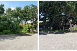 Photo #12: IndustriaLawn LLC. landscaping, pressure washing, tree service