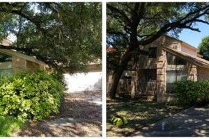 Photo #6: IndustriaLawn LLC. landscaping, pressure washing, tree service