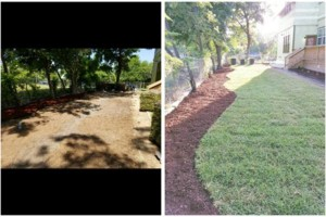 Photo #4: IndustriaLawn LLC. landscaping, pressure washing, tree service