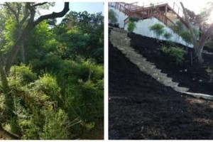 Photo #2: IndustriaLawn LLC. landscaping, pressure washing, tree service