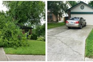 Photo #1: IndustriaLawn LLC. landscaping, pressure washing, tree service