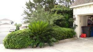 Photo #18: Quality Affordable Landscaping