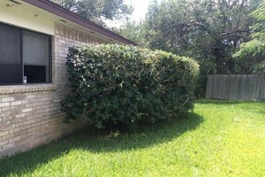 Photo #11: Quality Affordable Landscaping
