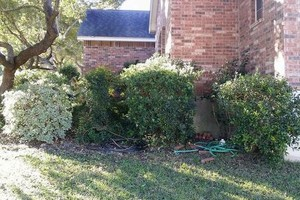 Photo #6: Quality Affordable Landscaping