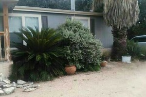 Photo #12: Rey's Lawn&Landscaping. Total Yard Makeovers!!