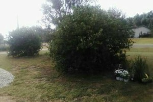 Photo #10: Rey's Lawn&Landscaping. Total Yard Makeovers!!