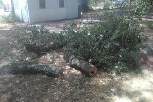 Photo #2: Rey's Lawn&Landscaping. Total Yard Makeovers!!