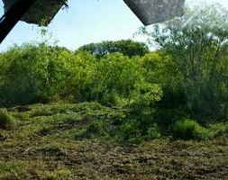 Photo #3: Respectful and responsible land clearing services