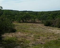 Photo #2: Respectful and responsible land clearing services