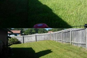 Photo #2: Firefighter Lawn Services/Mow, Trim, Edge and Clean-up