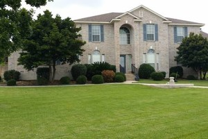 Photo #24: Lawn Care/ Cut Yards/ Tree Service/ Landscaping
