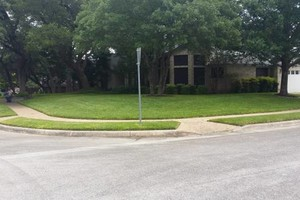 Photo #23: Lawn Care/ Cut Yards/ Tree Service/ Landscaping