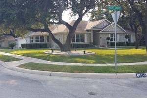 Photo #21: Lawn Care/ Cut Yards/ Tree Service/ Landscaping