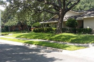 Photo #20: Lawn Care/ Cut Yards/ Tree Service/ Landscaping