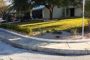 Photo #17: Lawn Care/ Cut Yards/ Tree Service/ Landscaping