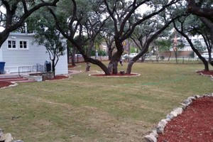 Photo #12: Lawn Care/ Cut Yards/ Tree Service/ Landscaping