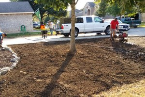 Photo #8: Lawn Care/ Cut Yards/ Tree Service/ Landscaping