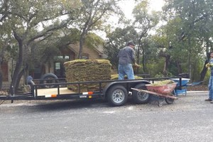 Photo #7: Lawn Care/ Cut Yards/ Tree Service/ Landscaping