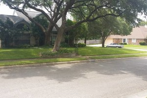 Photo #3: Lawn Care/ Cut Yards/ Tree Service/ Landscaping