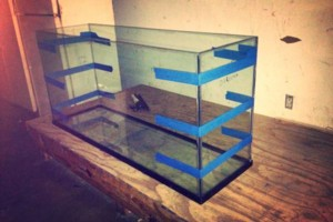 Photo #1: AQUARIUM REPAIR RESEAL