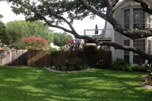 Photo #1: Lawn service. Small yard $45