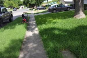 Photo #13: S&A Lawn Service by Simon Pena