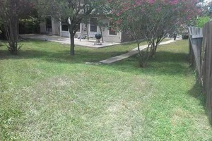Photo #6: Lawn Care & Tree trimming