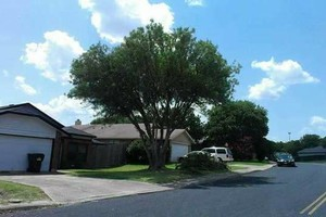 Photo #4: Lawn Care & Tree trimming