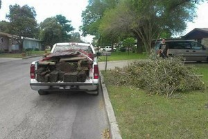 Photo #1: Lawn Care & Tree trimming