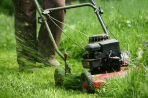 Photo #4: EXCELLENT Lawn Service $20 - BEST PRICES