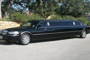 Photo #3: Shark Limo. Wedding Limos Only $65 hr w/Chauffeur