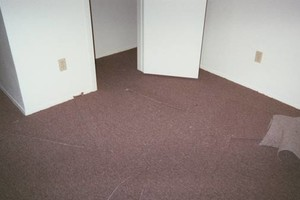 Photo #24: Carpet Stretching & Truck Mount Carpet Cleaning