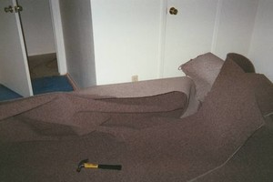 Photo #21: Carpet Stretching & Truck Mount Carpet Cleaning