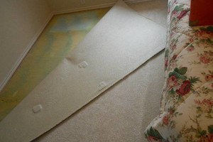 Photo #11: Carpet Stretching & Truck Mount Carpet Cleaning