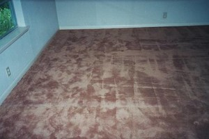 Photo #9: Carpet Stretching & Truck Mount Carpet Cleaning