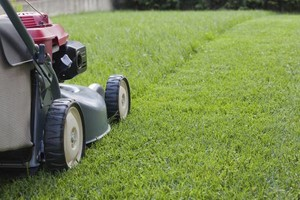 Photo #1: PATINO LAWN SERVICE