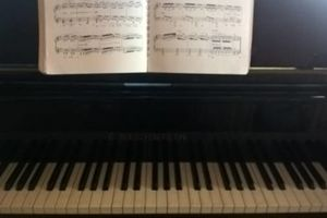 Photo #1: Piano Lessons at your home