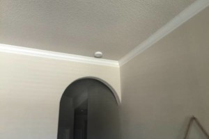 Photo #5: Professional painting at affordable prices