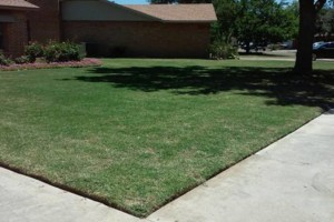 "Photo #4: Land and Home Improvement -  ""Keeping Lubbock Beautiful"""