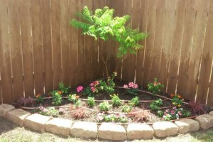 "Photo #1: Land and Home Improvement -  ""Keeping Lubbock Beautiful"""