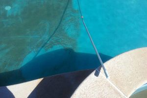 Photo #2: SWIMMING POOL CLEANER AND MAINTENANCE