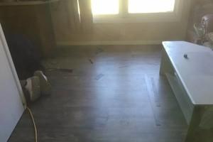 Photo #2: A-plus flooring -  laminated or wood floor