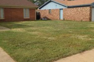 Photo #3: Redeemed Lawn Care - Hedge Trimming/Fertilizing/...